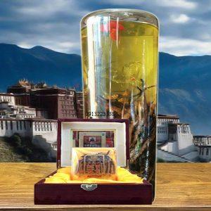 Rượu Đông Trùng Hạ Thảo có thực sự bổ như quảng cáo?